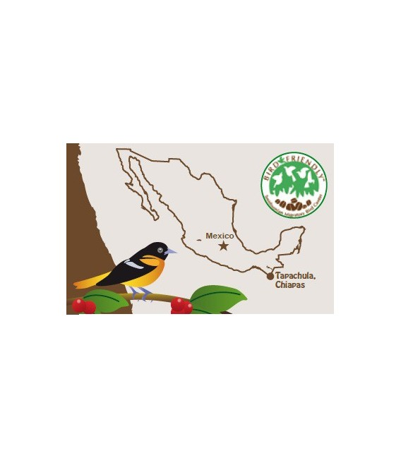 Mexique Tapachula