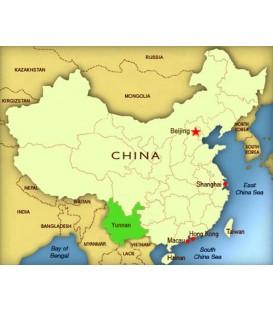 Chine FUYAN