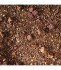 Rooibos Cherry Rouge