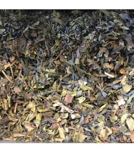 Thé vert des Açores